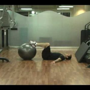Beginner Total Torso Training Workout B